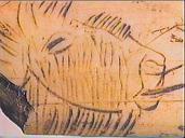 contour découpé magdalénien, Saint-Germain-en-Laye, musée d'Archéologie nationale, Photo : MAN