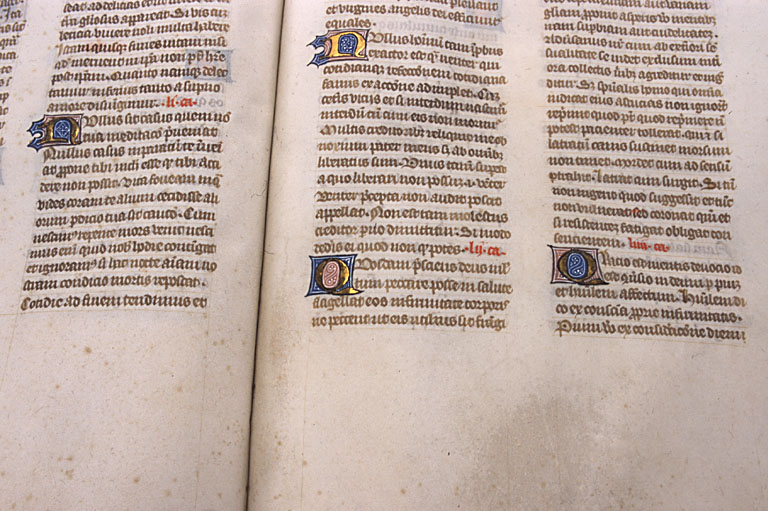 manuscrit ; enluminure