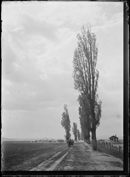 La Hongrie d'André Kertesz dans Photographies du monde d'autrefois sap56_72l000078_p