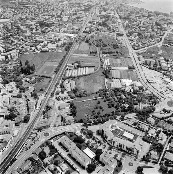 ville : port (polygone irrégulier d'un bassin artificiel)